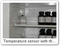 Temperature sensor with thermal buffering